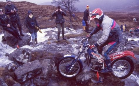 89 - P. Berggren'89 Fersit
